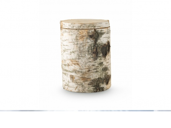 1 Baumurne aus Birkenholz